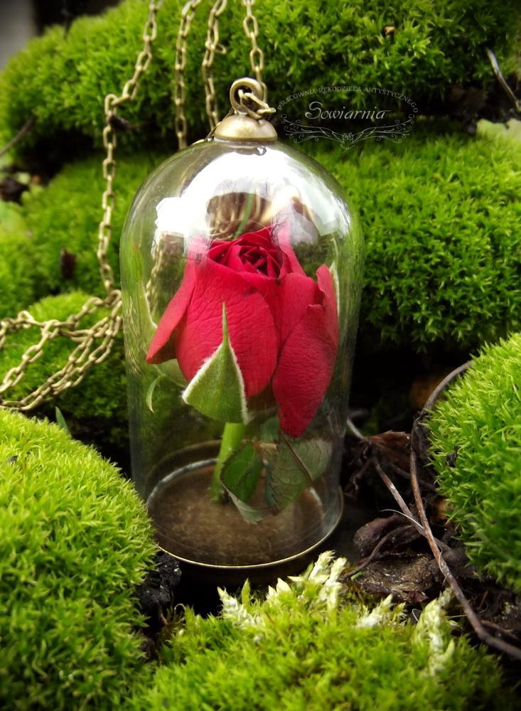 naszyjnik róża pod szklanym kloszem