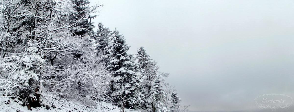 zaśnieżony las na gołoborzu