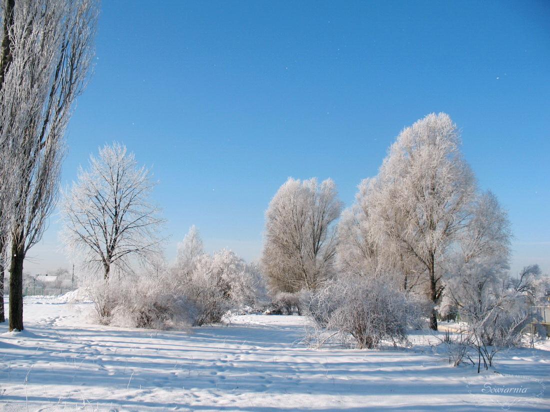 zaśnieżone Kielce