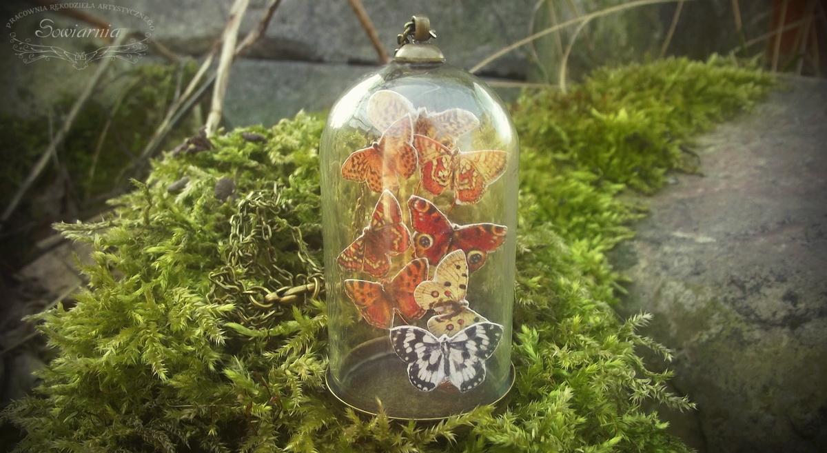 vintage butterfly terrarium