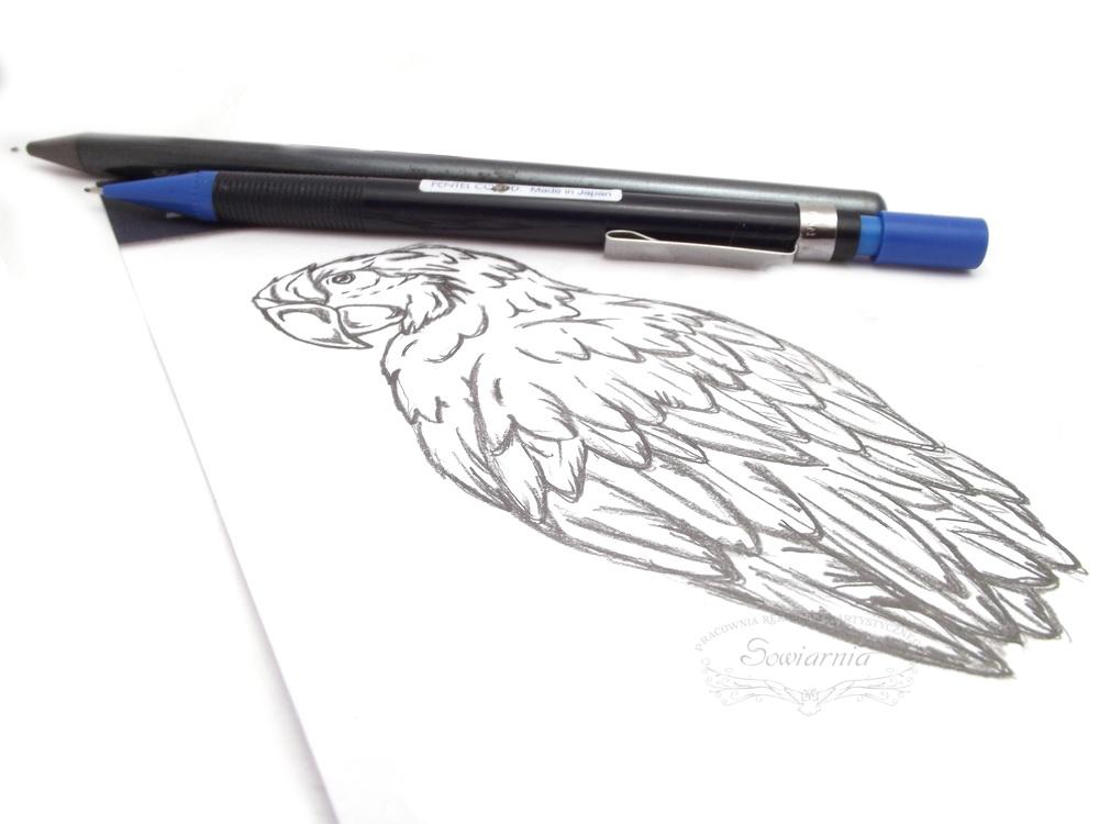 kolczyki papugi - szkic projektu