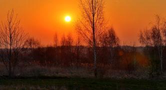 wiosenny poranek